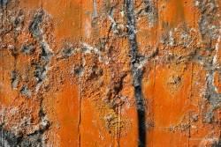 JT-Close-up-Colour-Bits-of-Paint-2018-0480-DS.jpg