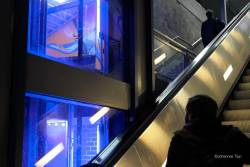 JT-Germany-Cologne-escalator-train-station-dusk-2019-4961-DS.jpg