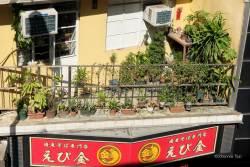 JT-China-Hong-Kong-Island-Balcony-Pot-Plants-2017-7886-DS.jpg