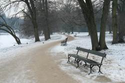 JT-Poland-Warsaw-Lazienki-Park-Benches-Snow-2018-2142-DS.jpg